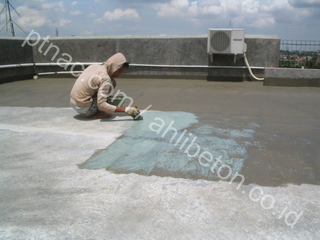 Waterproofing Coating Cat